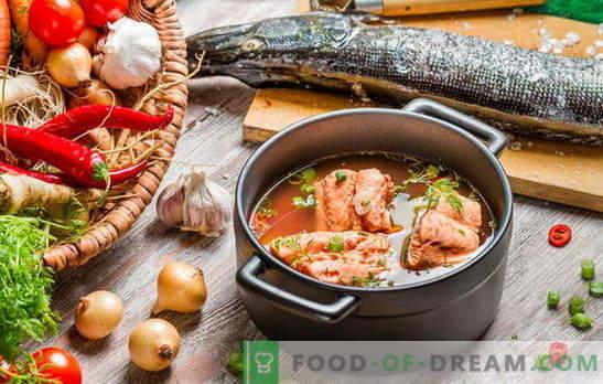 Fischsuppe zu kochen ist eine heikle Angelegenheit! Fischsuppe aus dem Fluss oder roten Fisch mit Gerste, Hirse, Konserven, Garnelen, Tomaten zubereiten