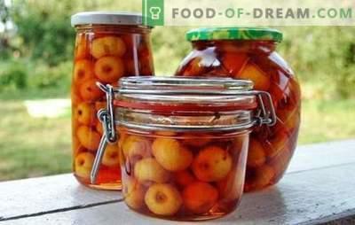 Ябълки в собствен сок за зимата: плодове, които могат да бъдат запазени. Варианти на интересни препарати - ябълки в собствен сок