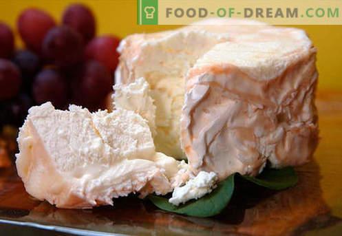 Selbst gemachter Käse - die besten Rezepte. Wie man richtig und lecker Käse zu Hause aus Hüttenkäse oder Milch kocht.