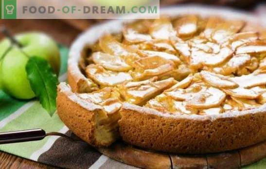 Sanfte Charlotte mit saurer Sahne und Äpfeln ist eine Delikatesse der ganzen Familie. Wie man eine Charlotte mit saurer Sahne und Äpfeln aus trockenem Brot macht