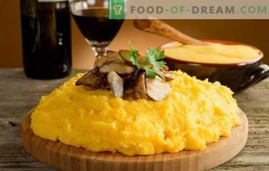 Polenta-Mais-Leckerei! Rezepte aus echtem italienischem Polenta mit Käse, Tomaten, Pilzen, Hähnchen, verschiedenen Gemüsen