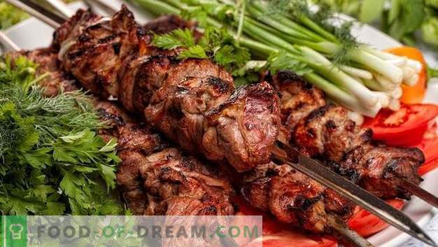 5 mejores adobos para kebabs: selecciona y cocina tus kebabs originales
