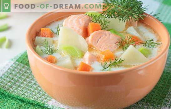 Rote Fischsuppe - wie für Erwachsene und Kinder. Schritt-für-Schritt-Rezepte für köstliche rote Fischsuppen: Lachs, Lachs, Rosa Lachs