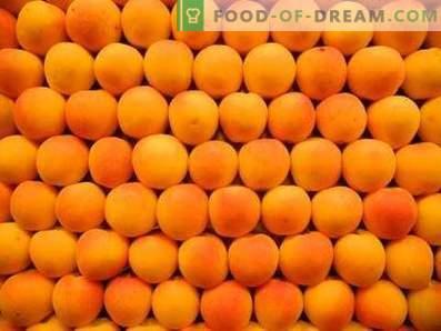 Wie man Aprikosen aufbewahrt
