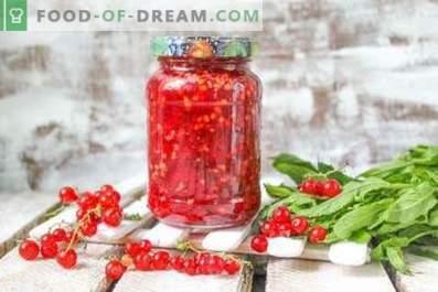Rote Johannisbeere, gerieben mit Zucker für den Winter