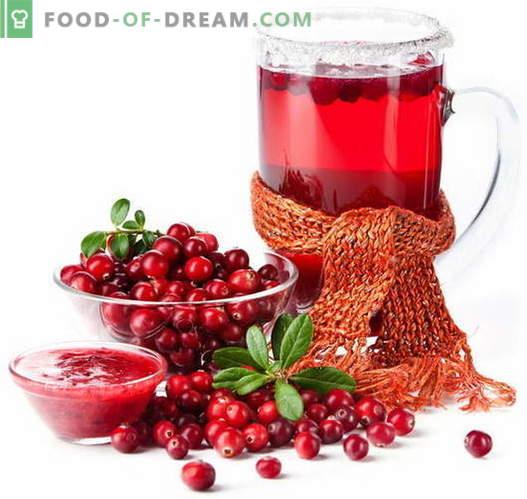 Cranberrysaft - die besten Rezepte. Wie man richtig und lecker Cranberry-Saft kocht.